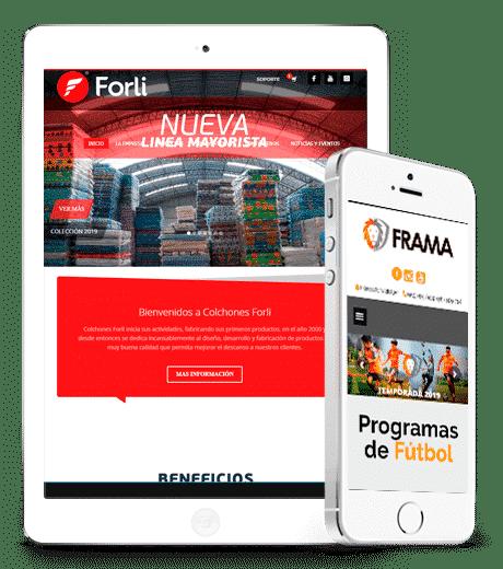 proyecto de diseño de pagina web